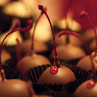 Food photography of a delicious chocolate covered cherry.